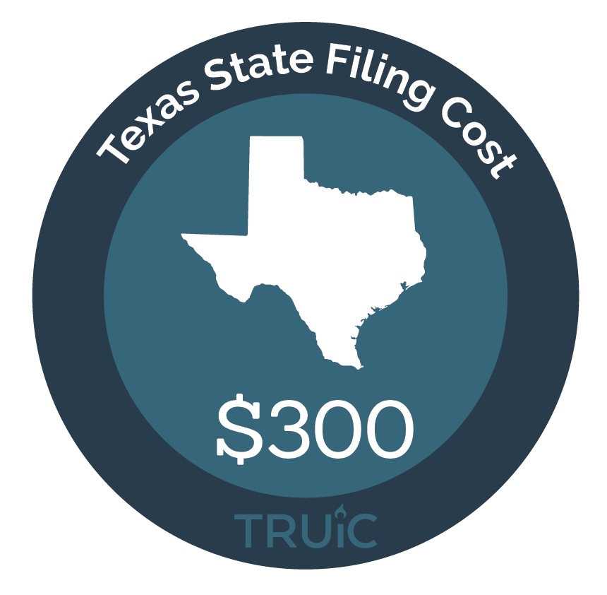 Texas State map icon with filing cost