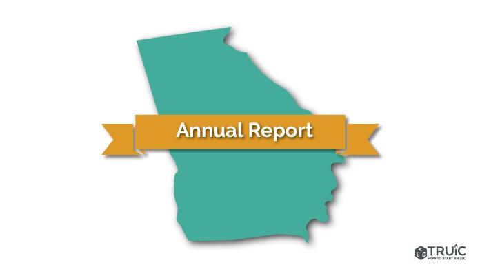 Georgia LLC Annual Registration Image