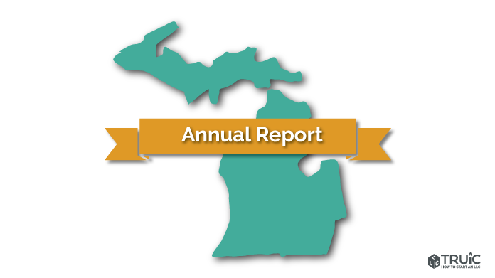 Michigan LLC Annual Report Image