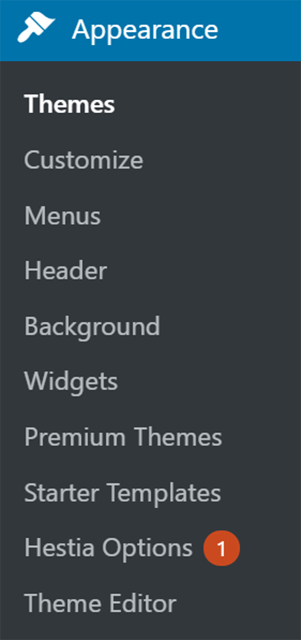 WordPress dashboard Appearance panel with themes.