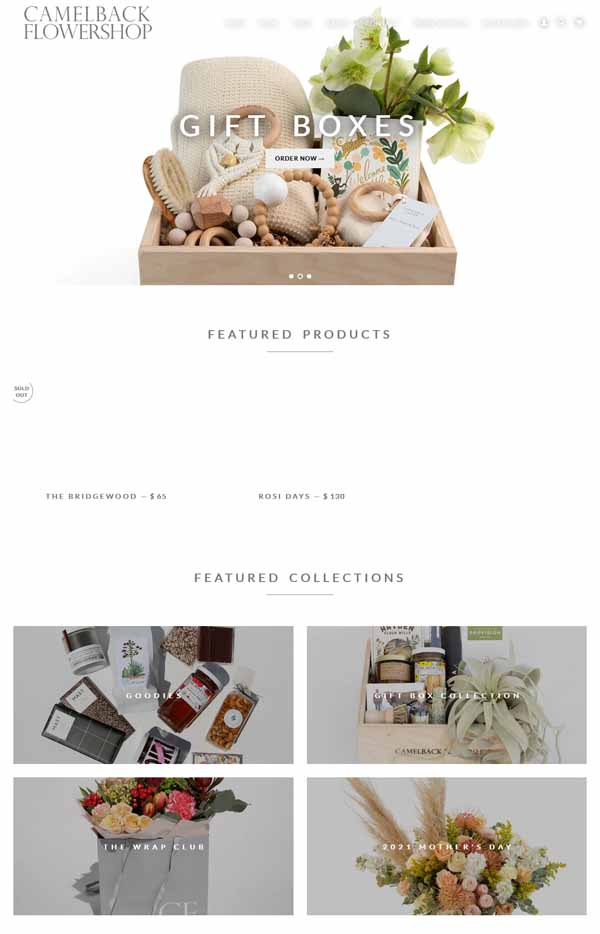 Examples of Shopify websites.
