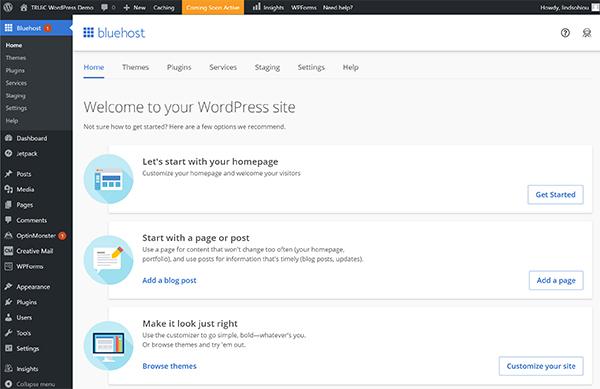 WordPress with Bluehost editing dashboard.