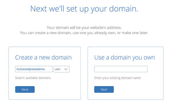WordPress domain set up screen.