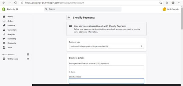 Shopify payment details