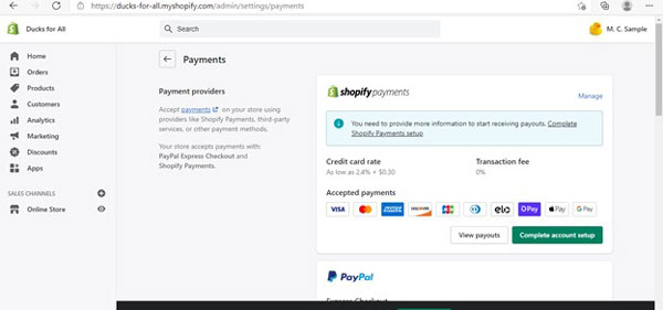 Shopify payments screen