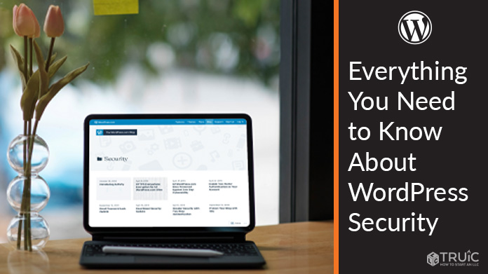 Learn everything you need to know about WordPress security.