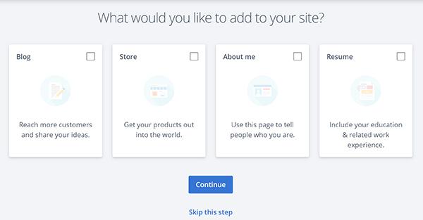 WordPress site builder add on options.