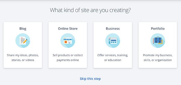WordPress website type selection.