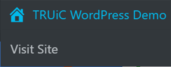 WordPress demo visit site button.