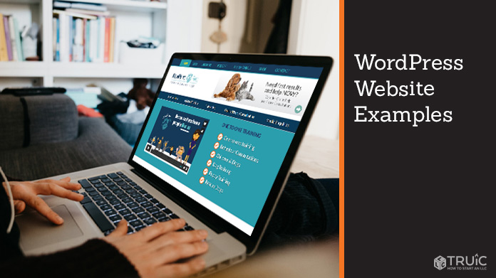 WordPress website example.