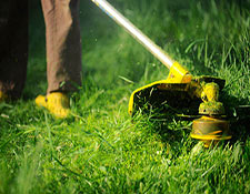 Close up of a person using a weed whacker on lawn