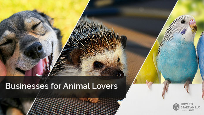 Business Ideas for Animal Lovers | How to Start an LLC