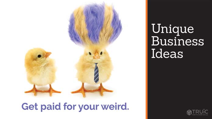 "A baby chick looking at a different chick with wild purple-striped hair with the caption ""Get paid for your weird idea."""