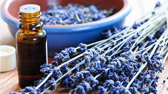 How To Start An Aromatherapy Business How To Start An LLC