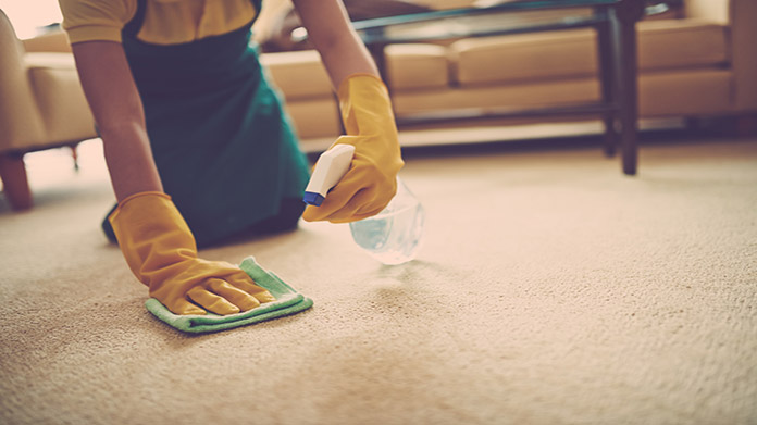 Carpet and Upholstery Cleaning Business Image