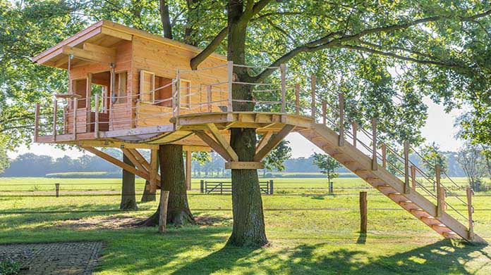 Custom Treehouse Business Image