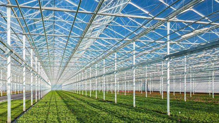 A large glass greenhouse with small plants growing in it