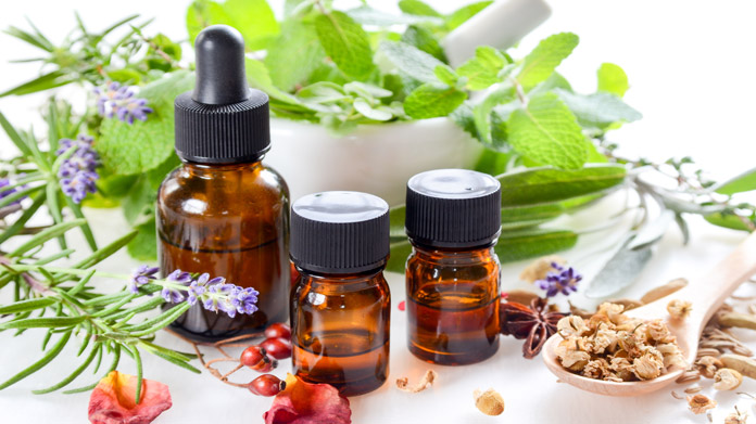 Medicinal Herbs Business Image