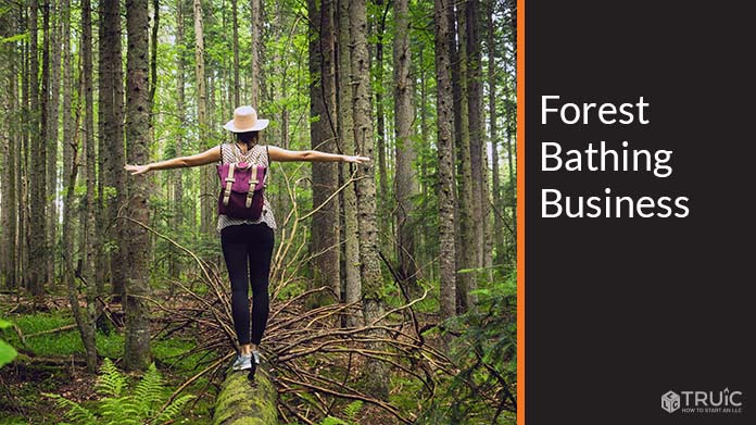 Forest Bathing Business Image
