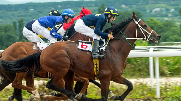 Horse Derby Business Image