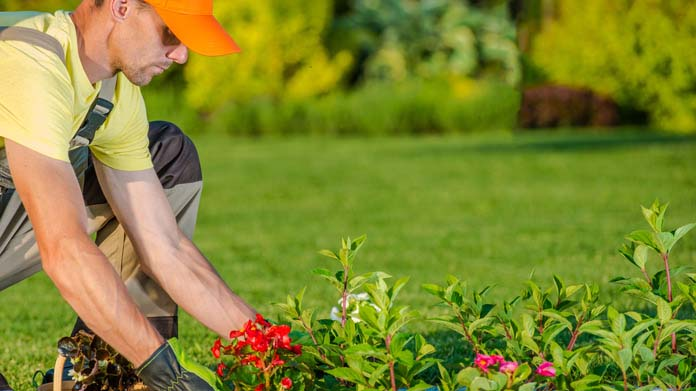 Responsible Landscaping Business Image