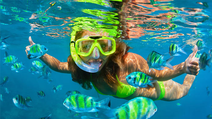 Snorkeling Business Image