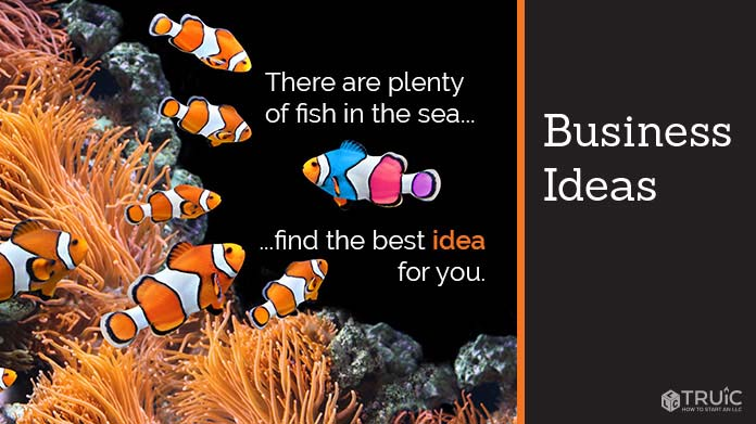 A school of multicolored fish, one has different colors 'there's plenty of fish in the sea, find the best idea for you'.