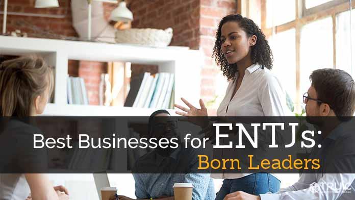 ENTJ Business Ideas image