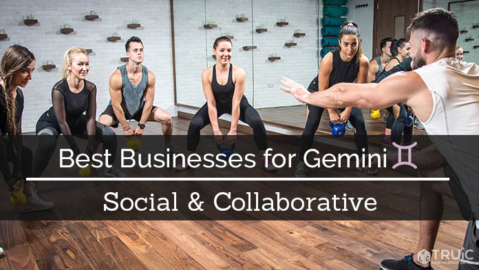 Gemini Business Ideas Image