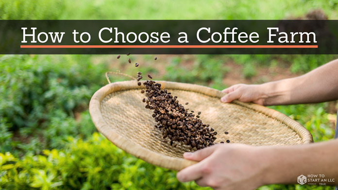 A person filtering coffee beans with the page's title at the top