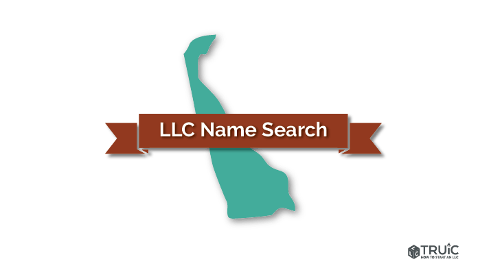 Delaware LLC Search Image