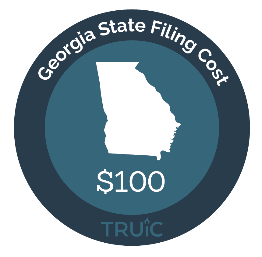 Georgia State map icon with filing cost