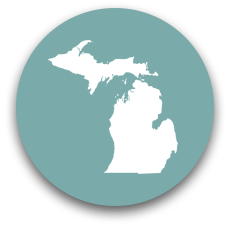 Form an LLC in Michigan
