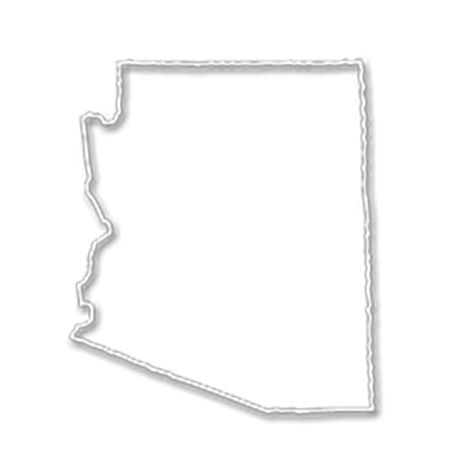 Form an LLC in Arizona