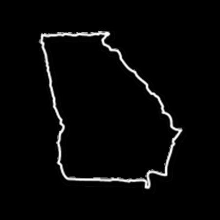 Form an LLC in Georgia