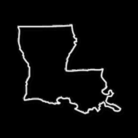 Form an LLC in Louisiana