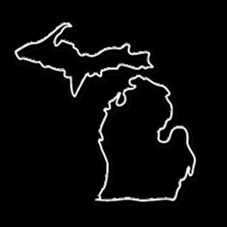 Form an LLC in Michigan