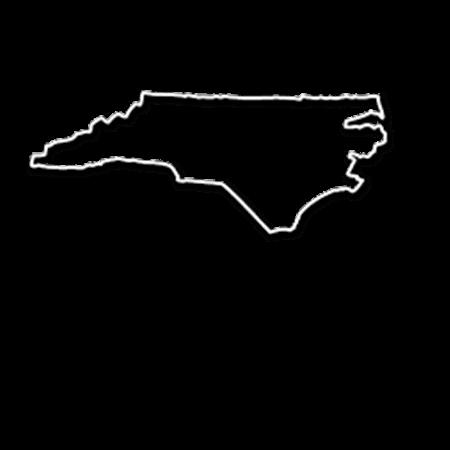 Form an LLC in North Carolina
