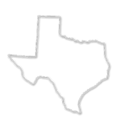 Form an LLC in Texas