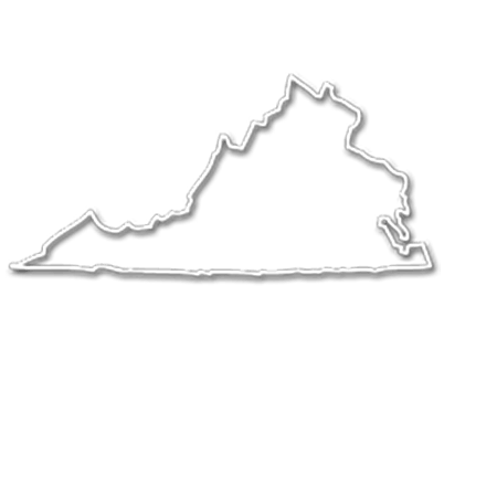 Form an LLC in Virginia
