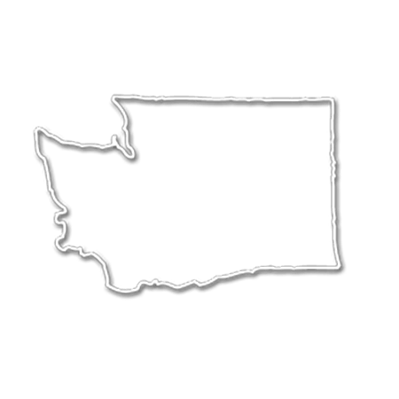 Form an LLC in Washington